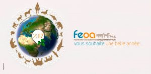 CARTE VOEUX 2017 - FEOA ©apparence