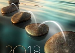 Bonne année 2018 voeux FEOA ©apparence
