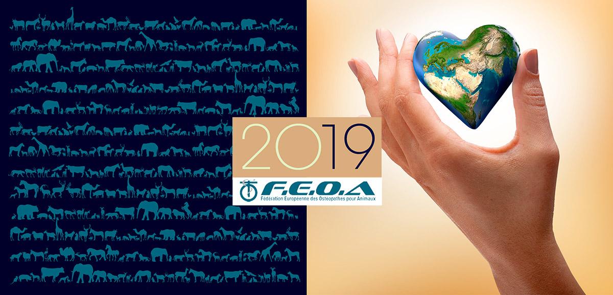 Voeux 2019 FEOA apparence design